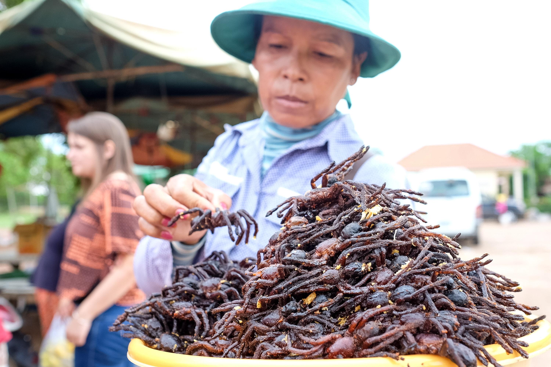 fried tarantulas in Cambodia
