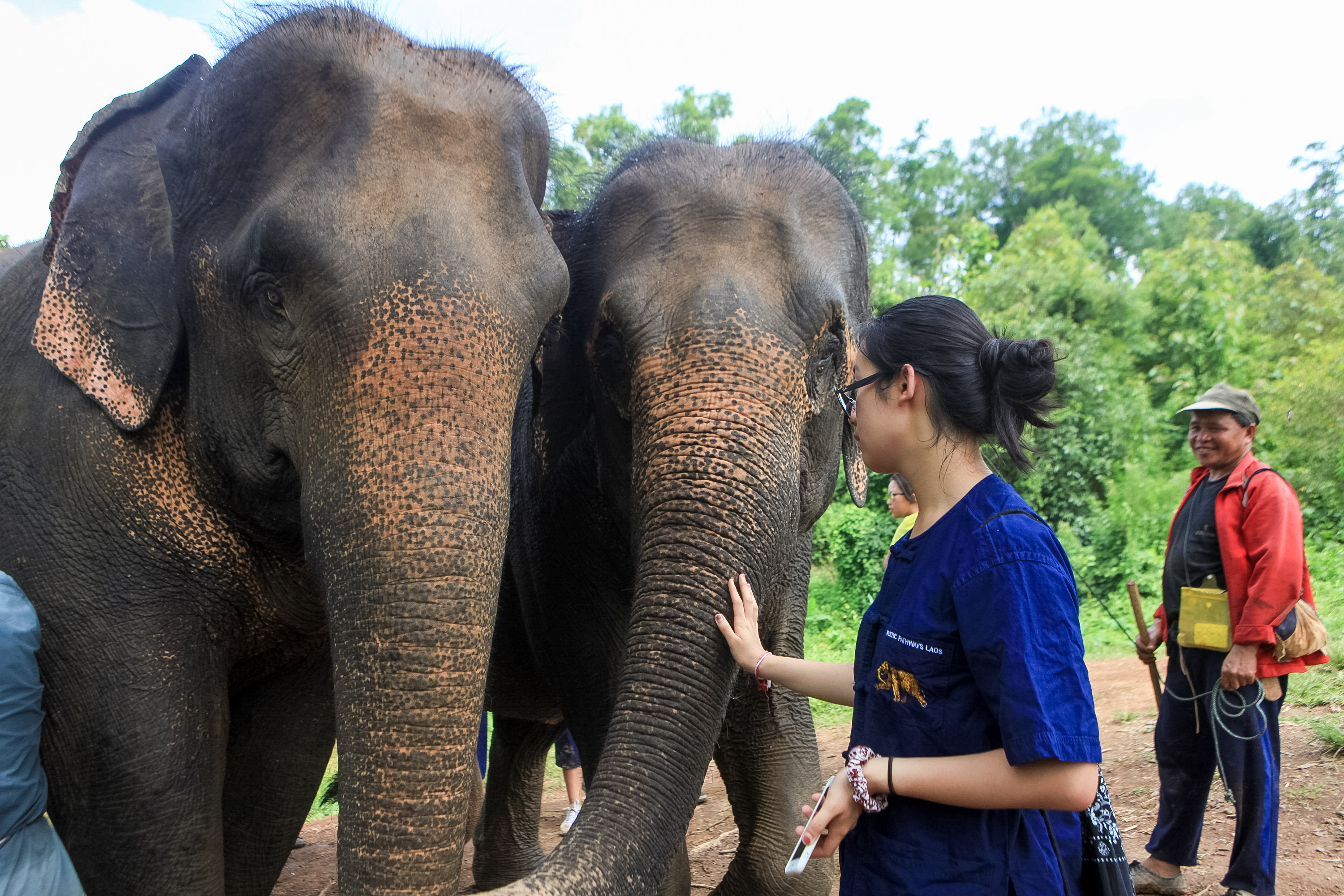 Lao Elephant Conservation Center with Rustic Pathways