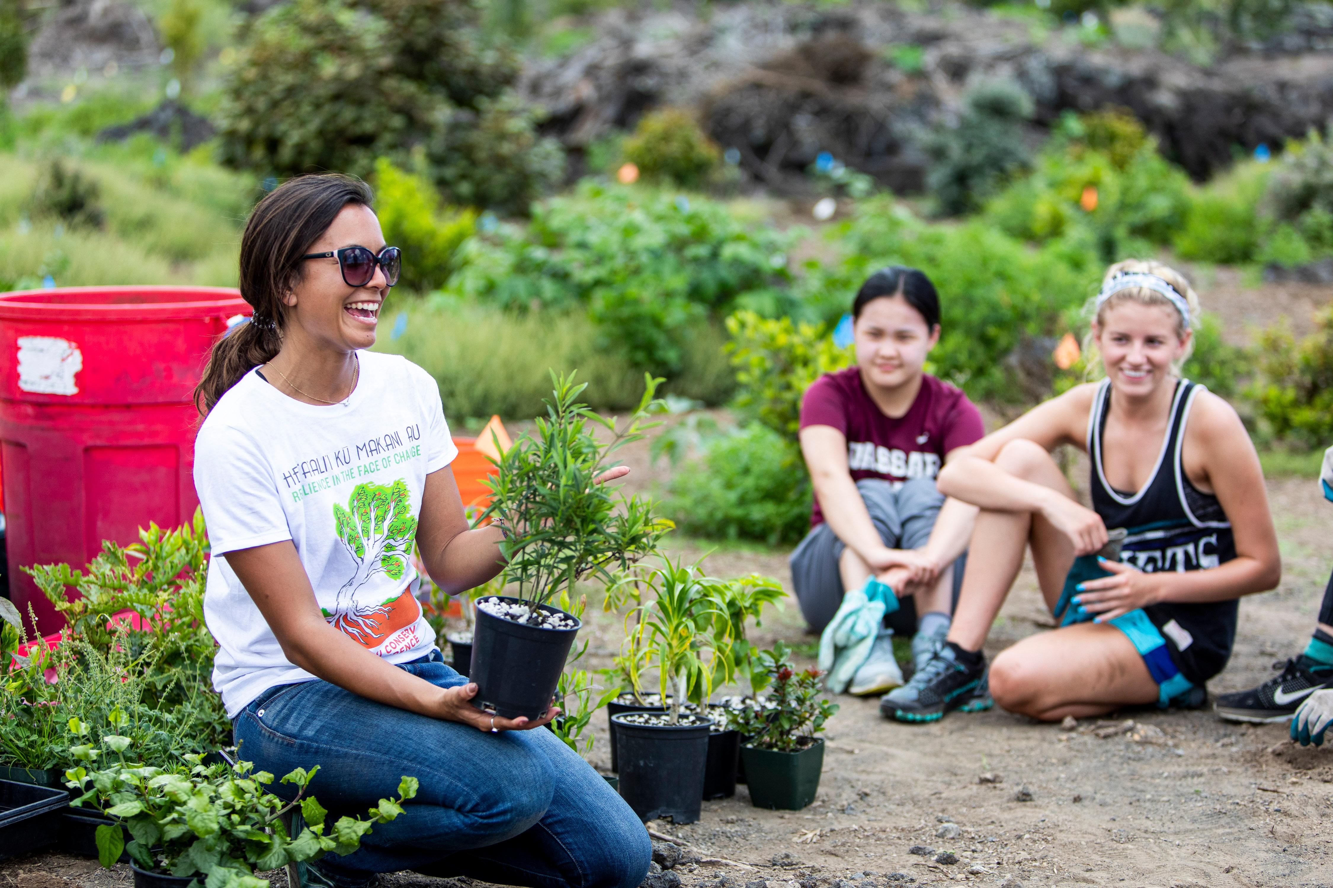 Garden Service Project in Hawaii