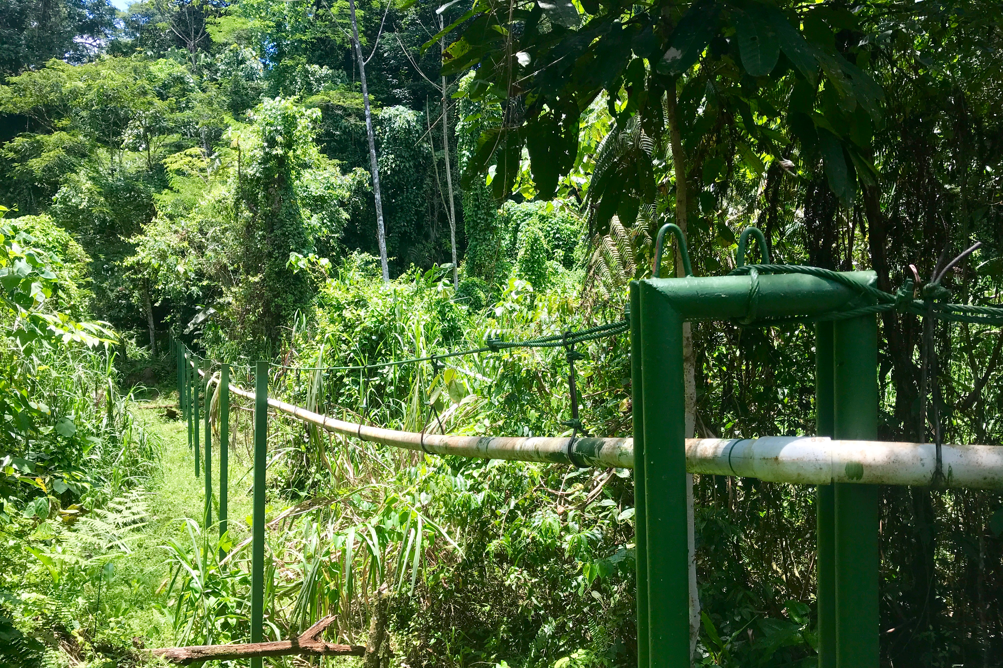 the completed Rustic Pathways Foundation aqueduct pipeline in Yorkin Costa Rica