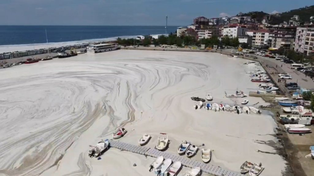 Sea Snot in Turkey